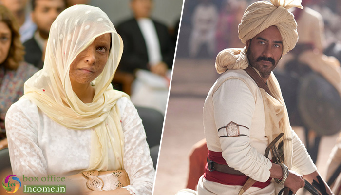 Chhapaak and Tanhaji 1st Day Collection Prediction: Ajay's Film Ready to take Good Lead!