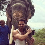 Haathi Mere Saathi: Pulkit Samrat bonds with his cutest co-star yet, Unni the Elephant