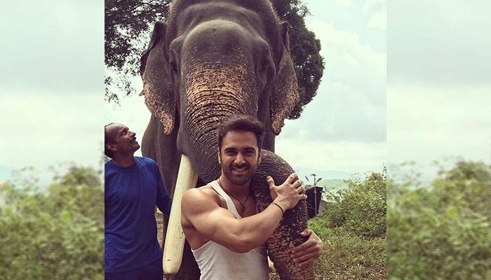 Haathi Mere Saathi: Pulkit Samrat bonds with his cutest co-star yet, Unni the Elephant!