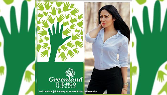 Actress Anjali Pandey Becomes the Brand Ambassador of Greenland: The NGO