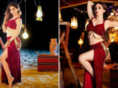 Heli Daruwala is all set to feature in Tony Kakkar's next song 'Laila'